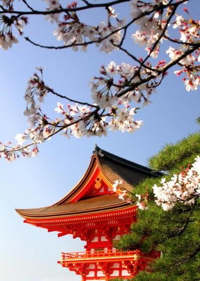 Гири для японцев – это норма поведения людей