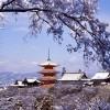 Киёмидзудэра – знаменитый японский храм